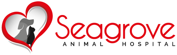 Seagrove Animal Hospital