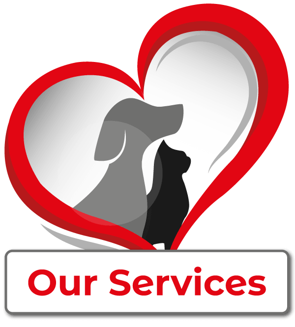 Services Offered by Our Veterinarian